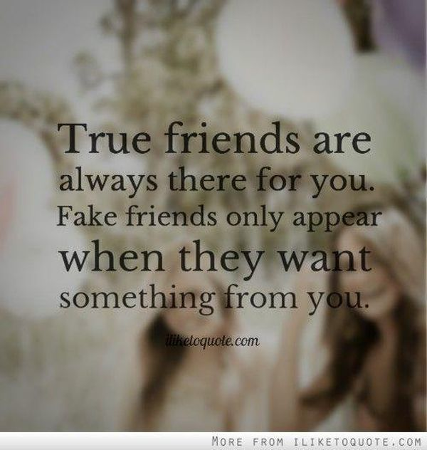 Best Images with Phony Friends Quotes for Facebook 11