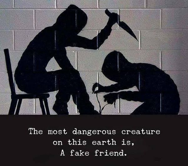 Best Images with Phony Friends Quotes for Facebook 7