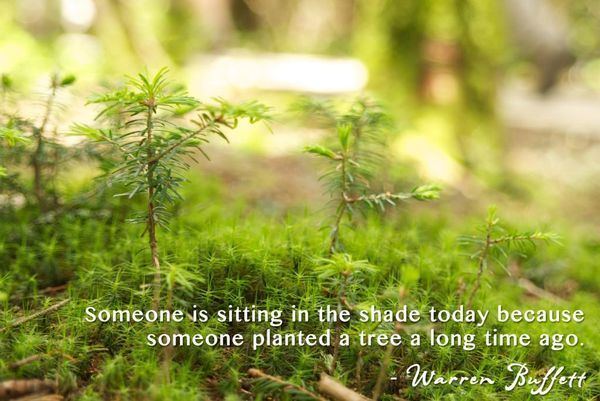Picturesque-Images-with-Earth-Day-Sayings-1