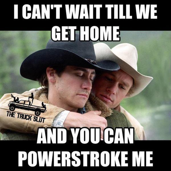 amazing ford owners be like