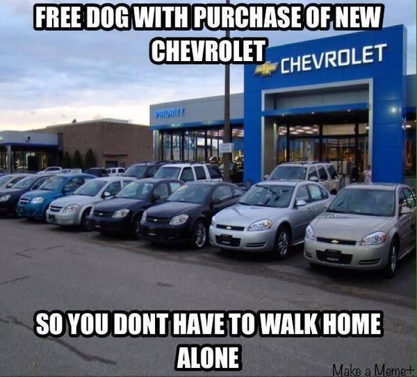 common ford puns humor