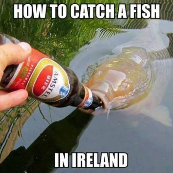 Remarkable funny fish pictures with captions