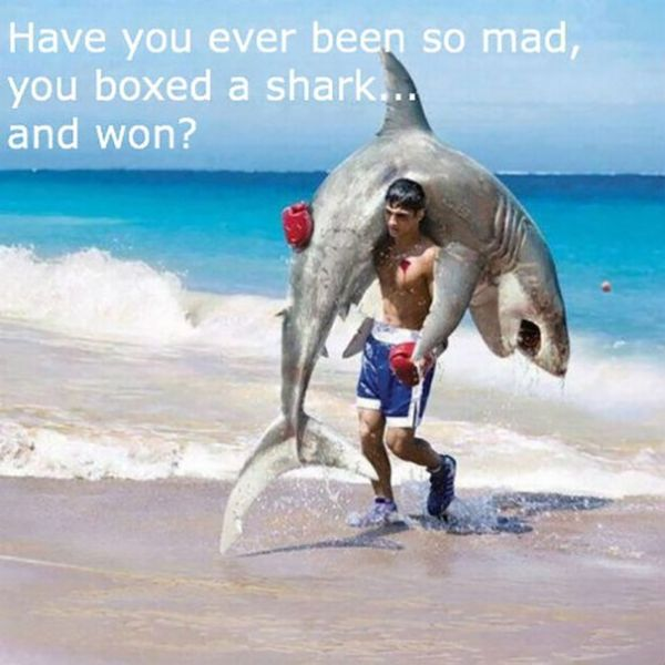 Funny hilarious fishing pictures