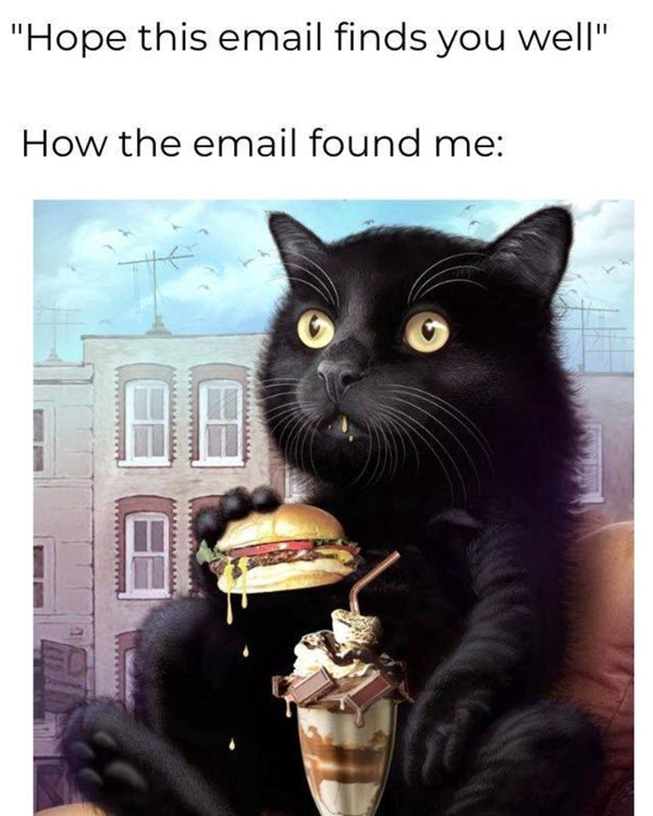 hope this email finds you well binging memes