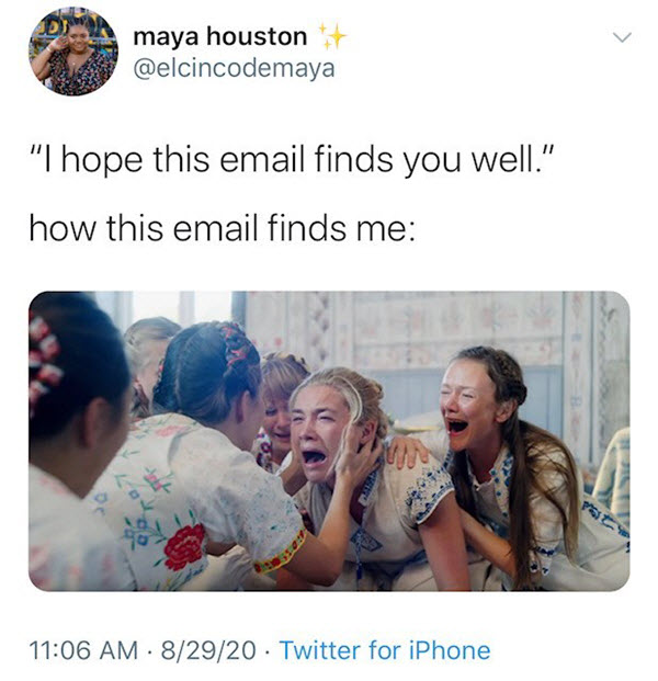 hope this email finds you well crying memes