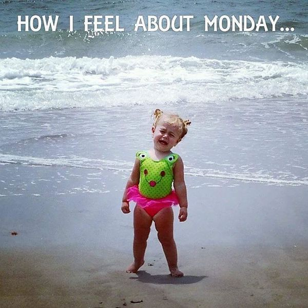 how feel about Monday meme