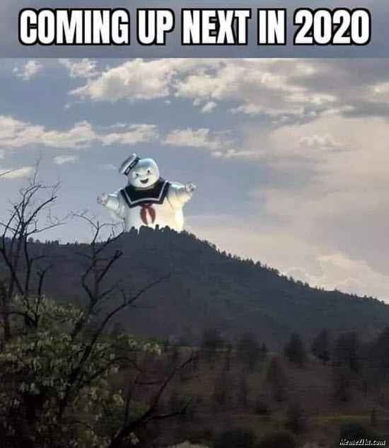 marshmallow meme coming up next in 2020