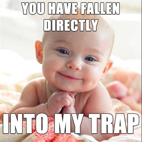 new baby meme you have fallen directly into my trap