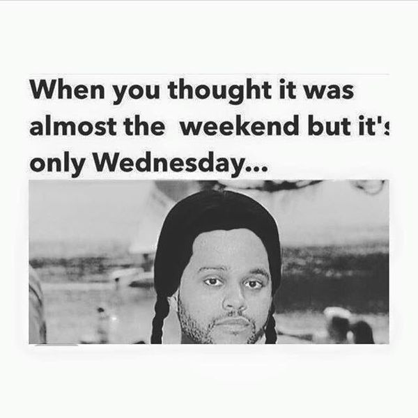 Showy only wednesday meme