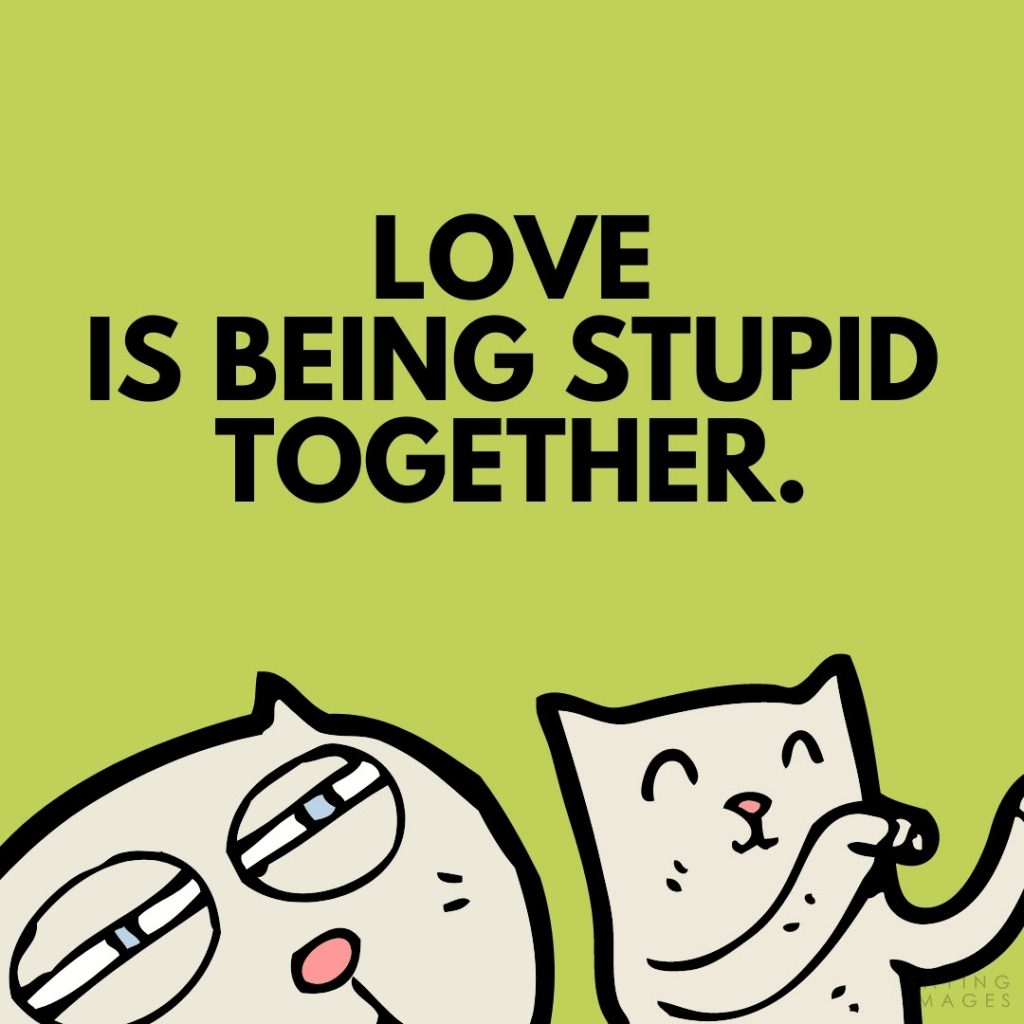 quotes for stupid facebook