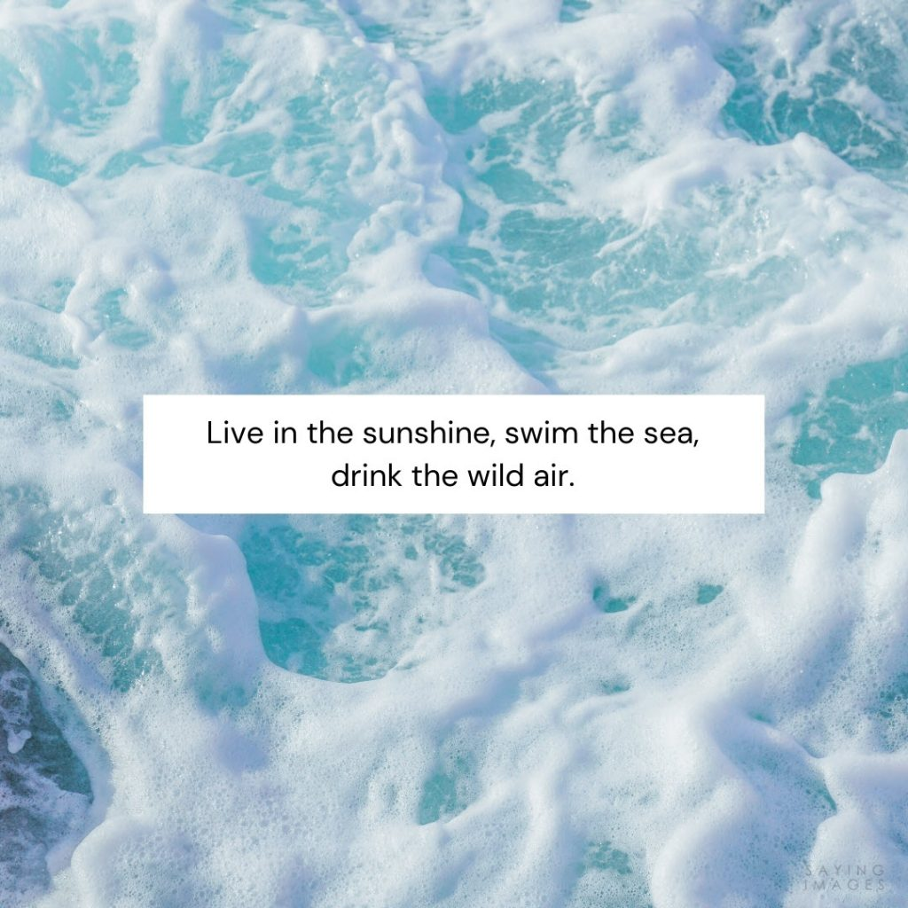 quotes for sunshine facebook