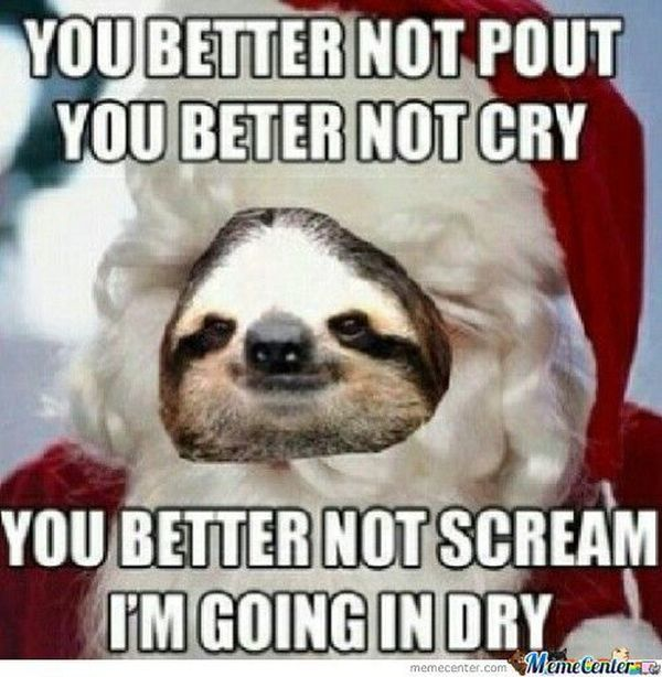 usual funny perverted sloth memes